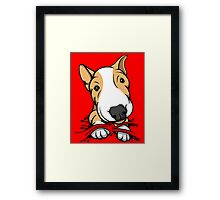 Cute Puppy Bull Terrier Tan and White Framed Print