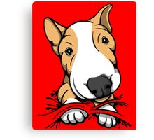 Cute Puppy Bull Terrier Tan and White Canvas Print