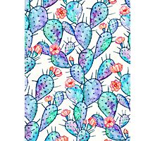 Rainbow Watercolor Cactus Pattern Photographic Print