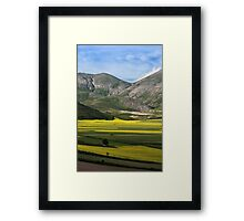 The fields of Castelluccio Framed Print