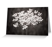 Floral Lace Greeting Card