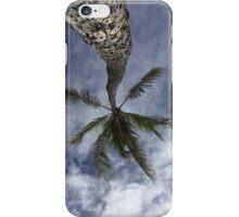 Palm Tree Hawaii iPhone Case/Skin