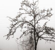 Tree in the mist Sticker