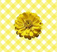 Yellow Zinnia on Lattice by WHIMSICALITY