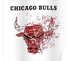 Chicago Bulls With Splatter Effect Poster