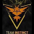 Pokemon GO Team Instinct Case by Paragrimm