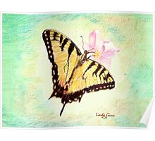 Monarch Butterfly on green background Poster