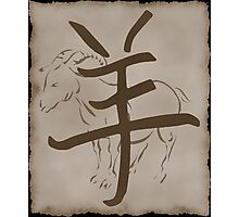 Year of The Sheep/Goat/Ram Photographic Print