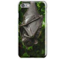Livinstone Fruit Bat iPhone Case/Skin