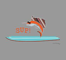 SUP ! surfing sailfish by JoshThomas