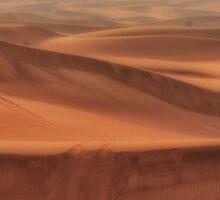 Dubai Desert Sticker