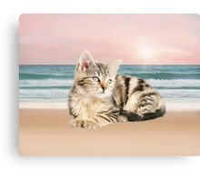 Striped Cat Sitting on Beach sunset Oil Painting Canvas Print