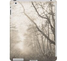 Dreamy Dutch Forest iPad Case/Skin