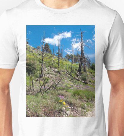 Wildflowers in Bloom on Mt. Lemmon ~ Santa Catalina Mountain Range Unisex T-Shirt