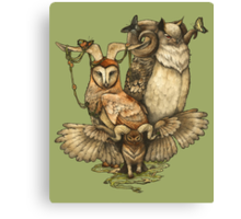 Goatowls (colour) Canvas Print