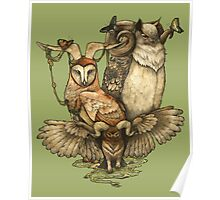 Goatowls (colour) Poster