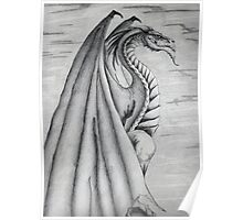 White and Black Dragon. Poster