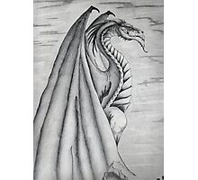 White and Black Dragon. Photographic Print