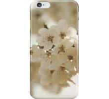 Flowering Pear iPhone Case/Skin
