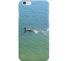 swimming duck iPhone Case/Skin