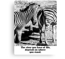 Zebra In A Bad Location Canvas Print