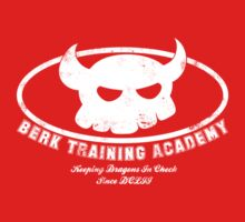 Berk Training Academy by stuffofkings