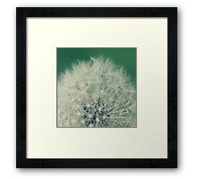 Fuzzy Wishes Framed Print