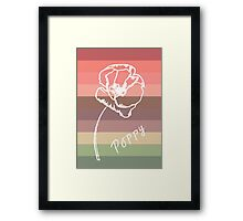 Poppy Study  Framed Print
