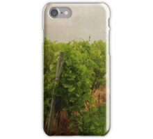 Grape Vines iPhone Case/Skin