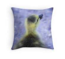 Pastel Gosling Throw Pillow