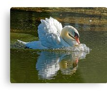 Aggressive Beauty Metal Print