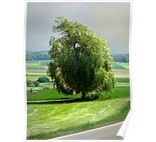 the willow near Silheim Poster