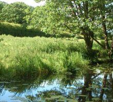 Walk Along The Canal Sticker