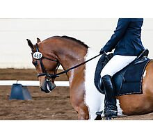 Dressage Horse Show Photographic Print