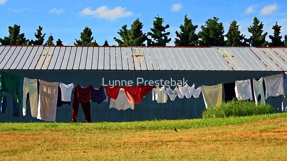 wash day by Lynne Prestebak