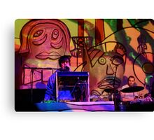 Animal Collective Concert Canvas Print