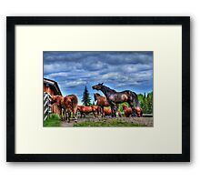 The Whinny Framed Print