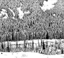 Lower Ground by Mike Wytinck