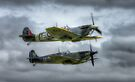 Supermarine Spitfire and Seafire by Nigel Bangert