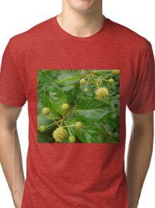 Mystery Plant Tri-blend T-Shirt