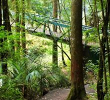 Walking track   New Zealand Sticker
