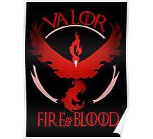 Team Valor!  Poster