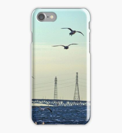 Seagulls Flying Above Niagara River | Niagara Falls, New York iPhone Case/Skin