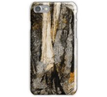 Father's Coat iPhone Case/Skin