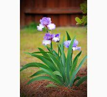 Blue Violet Irises  Unisex T-Shirt