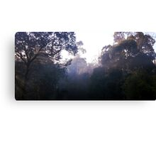 Morning in the Dandenong Ranges Canvas Print