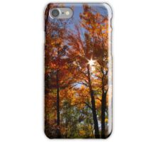 Autumn Trails iPhone Case/Skin