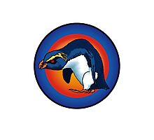 vXp - Vin the Xtreme Penguin Photographic Print