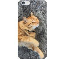 Max 09-27-15 iPhone Case/Skin