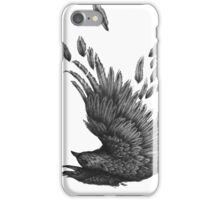 Raven Unravelled iPhone Case/Skin